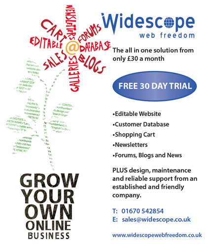 Widescope Web Freedom Small Business CMS